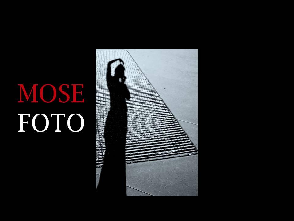 Première page du site www.mosefoto.com